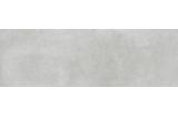 LIGHT GREY 24х74 (плитка настінна) MP706