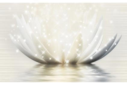 19Г331 MAGIC LOTUS 3, 25х40 (декор кремовый)