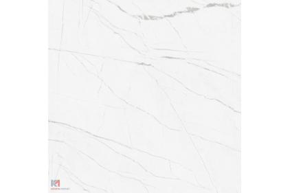 Г20830 ABSOLUTE 40х40 (плитка для підлоги і стін біла)