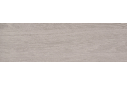 ASHENWOOD GREY 18.5х59.8 (плитка для підлоги і стін)