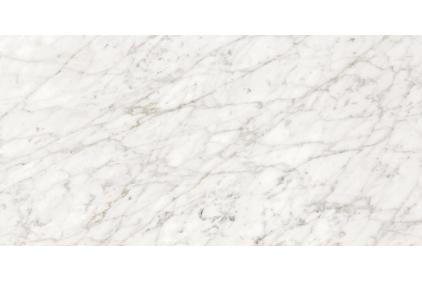 MAJESTIC APUANIAN WHITE 119.5х60 LEV/RETT (02576) 770