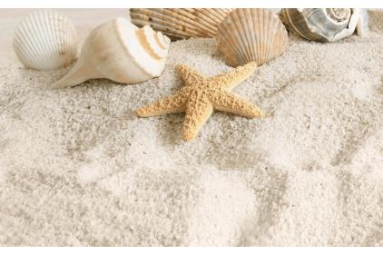 B41321 SUMMER STONE HOLIDAY 2, 25х40 (декор бежевый: пляж)