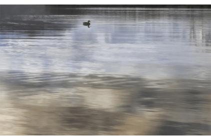 171361 WANAKA 6, 25х40 (плитка настінна, декор бежевий: пейзаж/природа)