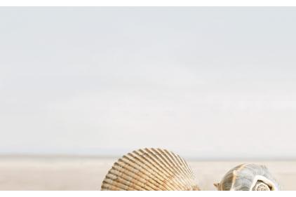 B41311 SUMMER STONE HOLIDAY 1, 25х40 (декор бежевый: пляж)