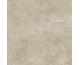 RAPID BEIGE 60х60 (плитка для підлоги і стін)
