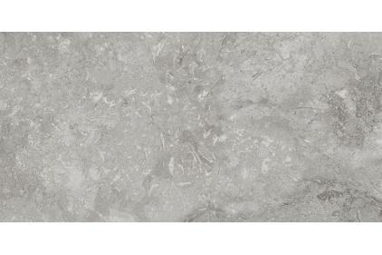 R.012 BUXI GRIS 30x60 (плитка для підлоги і стін)